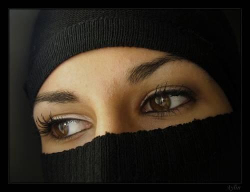 Мир ислама картинки - 44